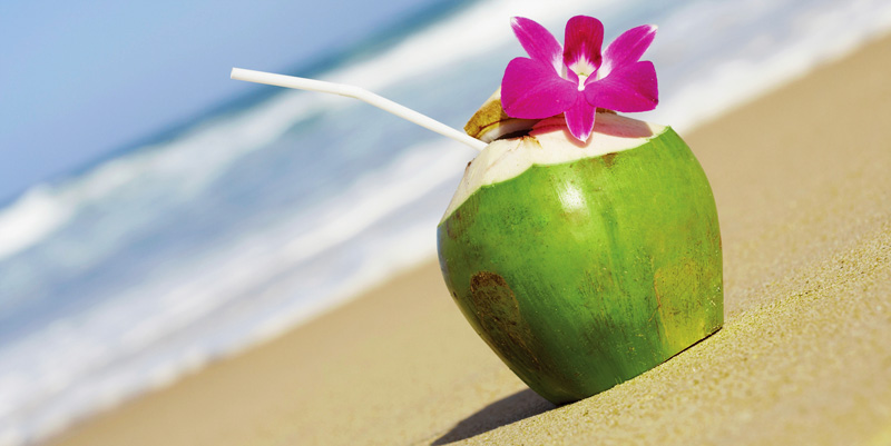A lovely bunch of coconuts